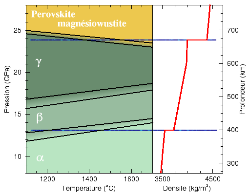The phase diagram of olivine and the seismological discontinuities